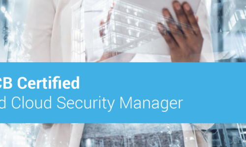Lead Cloud Security Manager